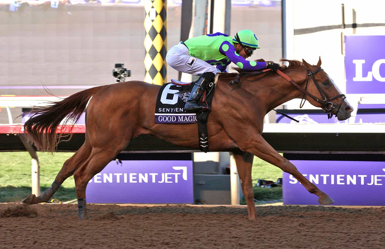 Racing dudes 2018 top 20 kentucky derby rankings 1 thoroughbred good magic winning the sentient jet breeders cup juvenile at del mar racing dudes photo falaconquin