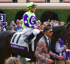 Racing Dudes Divisional Rankings 11/22/17: Thanksgiving Races Could Impact Rankings