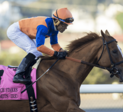 Off Limits Surges Late In G1 Matriarch