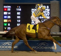 Pink Lloyd Caps Perfect Season With G2 Kennedy Road