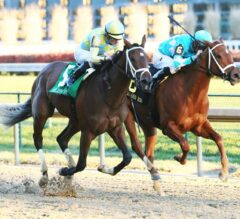 Road to Victory Wins Thrilling G2 Golden Rod