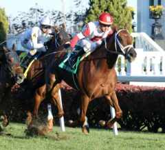 Shining Copper Wires Way To Win In G3 River City