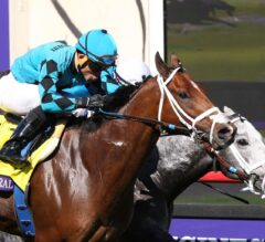 Miller, Rockingham Hit Exacta In Turf Sprint With Stormy Liberal, Richard's Boy
