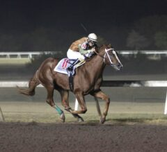 Springboard Mile Preview: Shippers Invade Remington for Valuable Derby Points