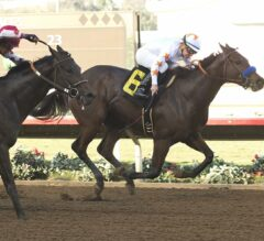 Starlet Stakes Preview: Small Field Offers Big Opportunity for 2-Year-Old Fillies