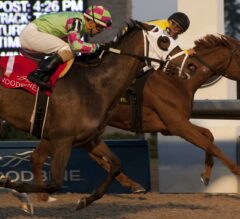 Dixie Moon Lands Exciting $125,000 Ontario Lassie