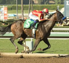 Los Alamitos Futurity Preview: Baffert Ready to Unleash New Wave of Talent