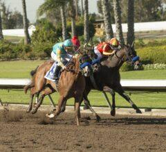 Racing Dudes Three Stars of the Week: Drama at Los Alamitos