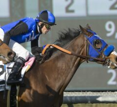 Midnight Crossing Wires G3 Robert J. Frankel In Upset