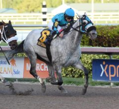 Racing Dudes Three Stars of the Week: X Y Jet Takes off at Gulfstream