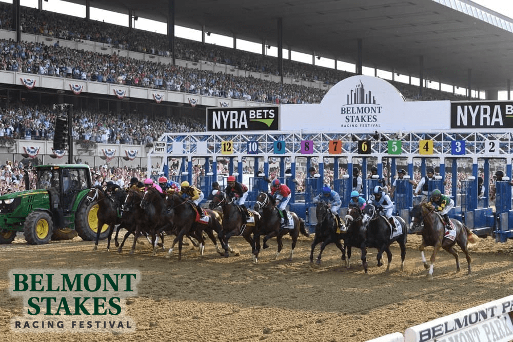 Belmont Stakes Contenders Picks And Results Thoroughbred Racing Dudes