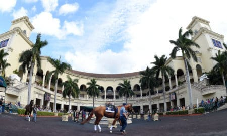 Gulfstream Park Tipsheet | | Thoroughbred Racing Dudes