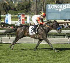 Heck Yeah Surges Late, Wins $100,000 California Cup Turf Sprint