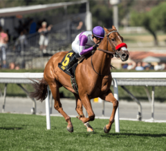 How About Zero Home Free In $150,000 Filly & Mare Turf Sprint