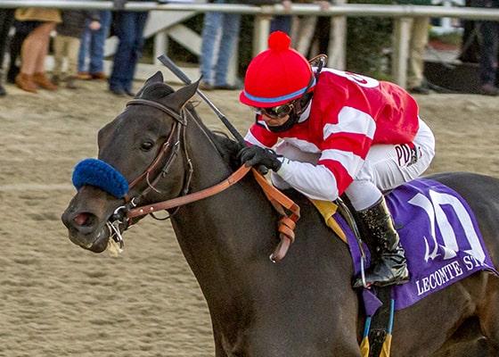 Racing dudes three stars of the week instilled regard for Show pool horse racing