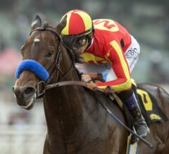 Pennsylvania Derby Preview: McKinzie Ready to Shine