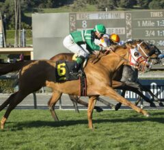 Rye Overpowers In Final Jump To Take $200,000 Unusual Heat Turf Classic