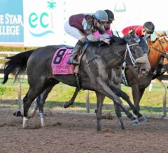 Tiger Moth Outlasts Actress In G3 Houston Ladies Classic