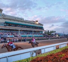 Pegasus World Cup 2019 Updates