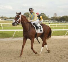 Ohio Derby Preview: Flameaway, Lone Sailor Get Class Relief