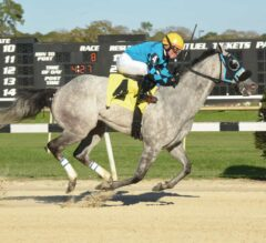 X Y Jet Wins $100,000 Pelican Stakes For Fun
