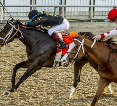 Bravazo Noses Out Victory In G2 Risen Star
