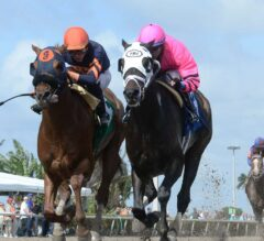 Handicapping 301: Finding Bad Favorites