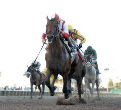 Racing Dudes Three Stars of the Week: Economic Model Successful in Return