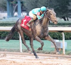 Louisiana Derby Preview: My Boy Jack Looks to Prove Himself on a Fast Track