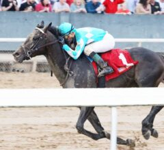 Lexington Stakes Preview: Last Chance for Derby Points