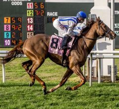 Synchrony Scores Off Bench In G3 Fair Grounds