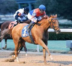 Wilbo Scores Again In $125,000 King Cotton