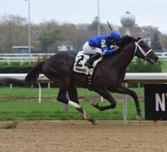 Withers Stakes Preview: Avery Island Set for 2018 Debut