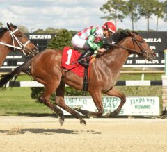 C. S. Incharge Takes Charge Down Stretch In $150,000 Suncoast