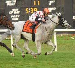 World Approval Wins Fourth Straight In G3 Tampa Bay