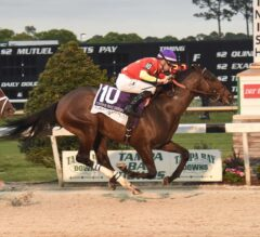 Quip Quick To Conquer G2 Tampa Bay Derby
