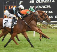 Andina Del Sur Up In Time In G3 Florida Oaks