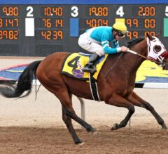 Blamed Cruises To Easy Victory In $200,000 Sunland Park Oaks