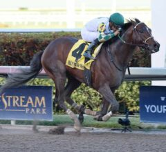 Classic Rock Bashes To Victory In G3 GP Sprint