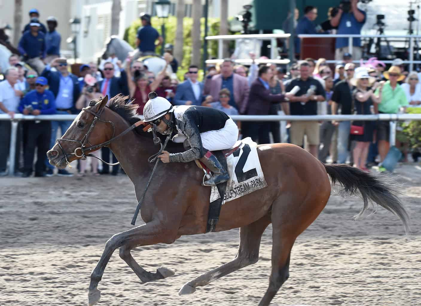 Derby streak set in 1882 broken by 3-year-old Justify