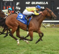 Fourstar Crook Up In Time In G2 Hillsborough