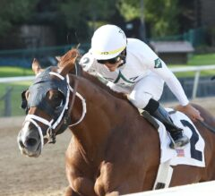 Pimlico Special Preview: Pletcher Holds Strong Hand with Two Runners