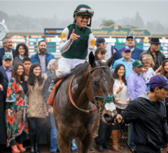 Bolt d'Oro Awarded Controversial G2 San Felipe
