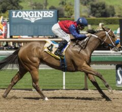 Miss Sunset Cruises To Victory In $100,000 Irish O'Brien
