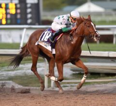 Five Kentucky Derby Horses That Have NO CHANCE of Winning