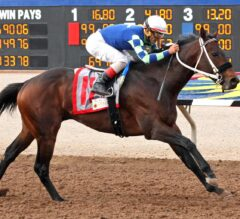 Runaway Ghost Spurns Shippers, Scores Superiority In G3 Sunland Derby
