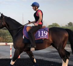 Road to Dubai World Cup: 'Talented' Talismanic Tremendous in Mornings