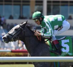 Team of Teams Wires $100,000 Sand Springs Stakes