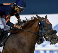 Whitney Stakes Preview: Mind Your Biscuits Faces Major Test