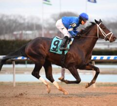 Enticed Walks Home Victorious In G3 Gotham